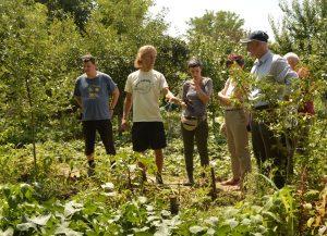 Vizită în grădinile membrilor Eco Ruralis, 2018, jud. Buzău