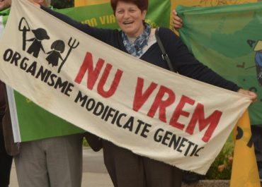 Scrisoare deschisă: Solicităm Uniunii Europene să se opună organismelor modificate genetic